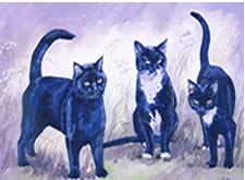 Watercolours Painting of  Ron & Bennie Paxton Cats